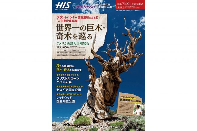 HIS 人生をかえる旅 世界一の巨木・奇木を巡るツアー