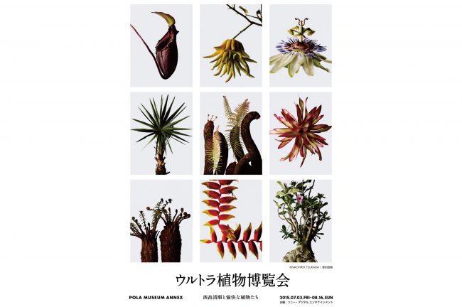 ウルトラ植物博覧会 ~西畠清順と愉快な植物たち〜