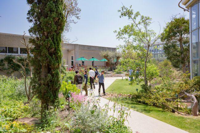 ときわミュージアム 世界を旅する植物館