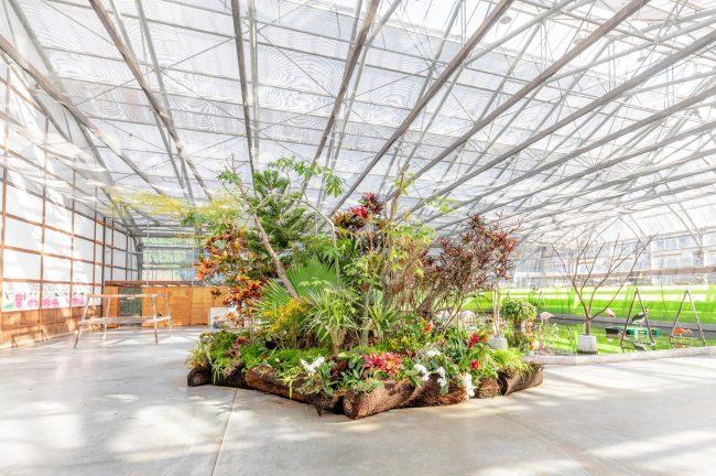掛川花鳥園 KKE Unusual Plants Fes 2019「花と鳥の楽園計画」展示