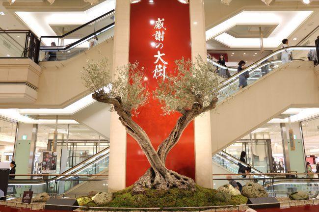大丸 秋の三百周年祭 感謝の大樹