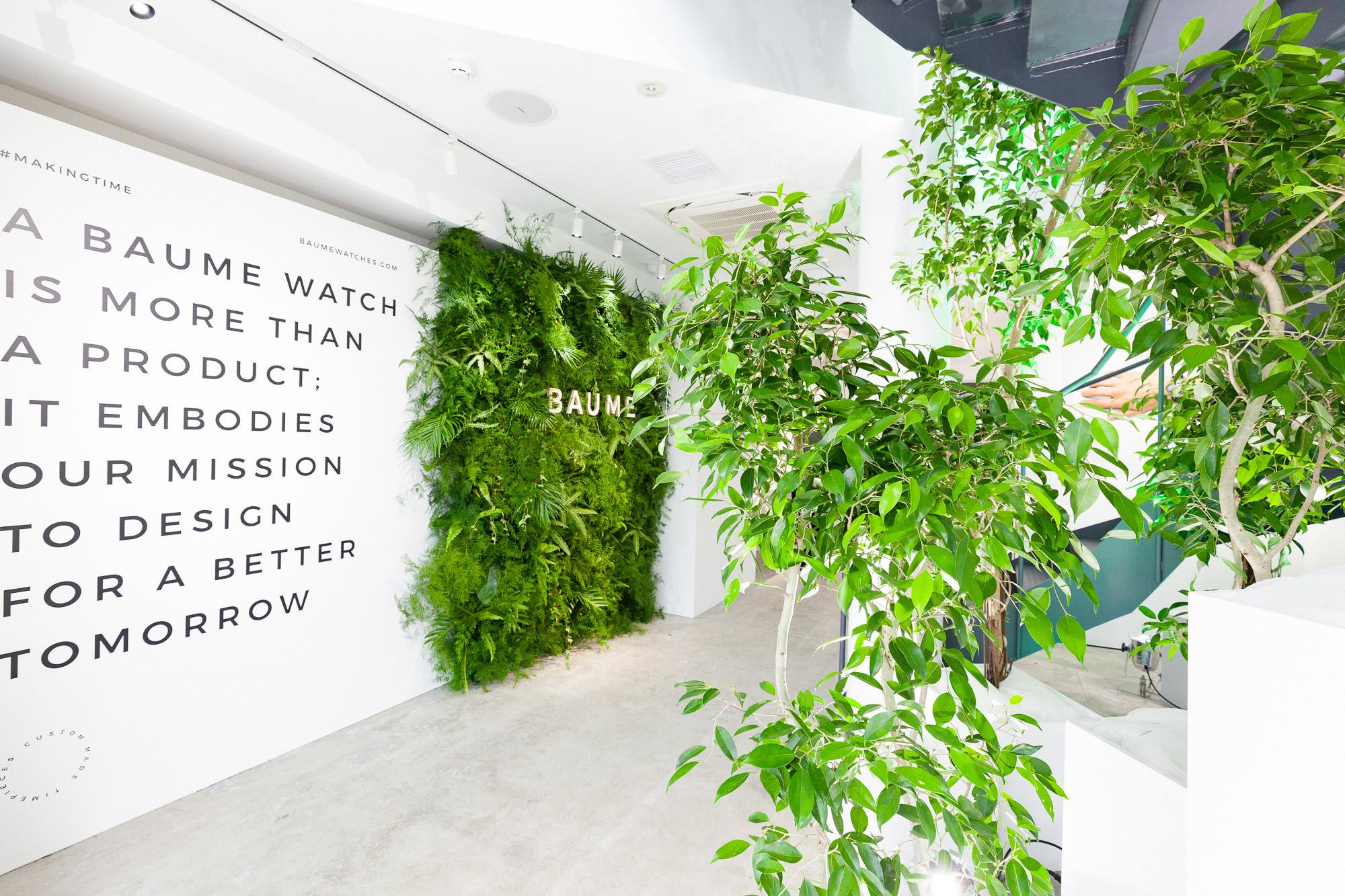 壁面緑化と観葉植物を用いた屋内緑化